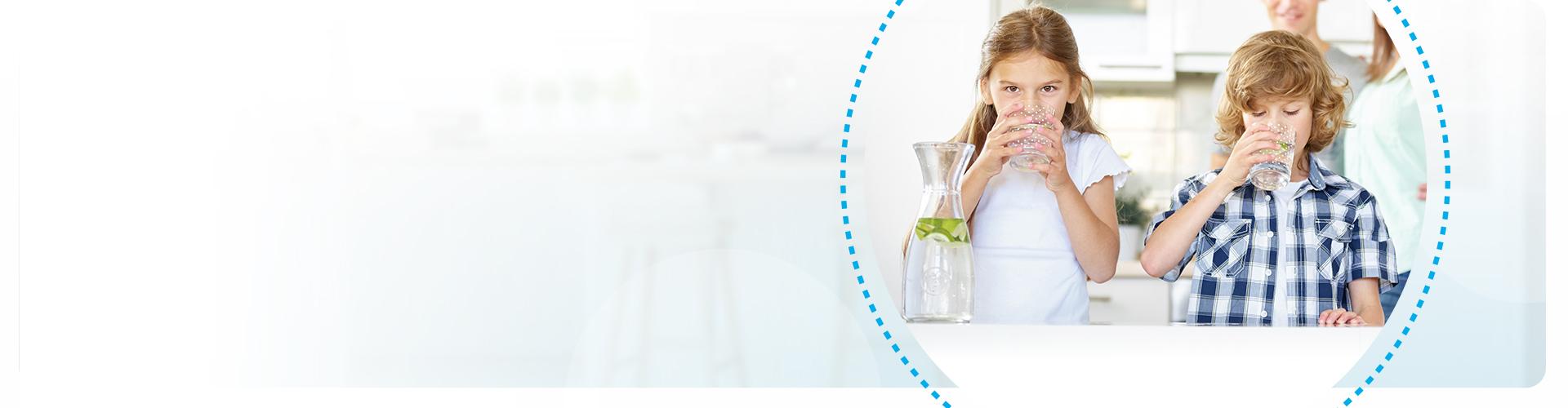 Joogivee kojutoimetamine